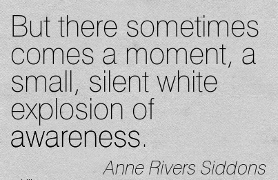 But There Sometimes Comes A Moment, A Small, Silent White Explosion Of Awareness. - Anne Rivers Siddons
