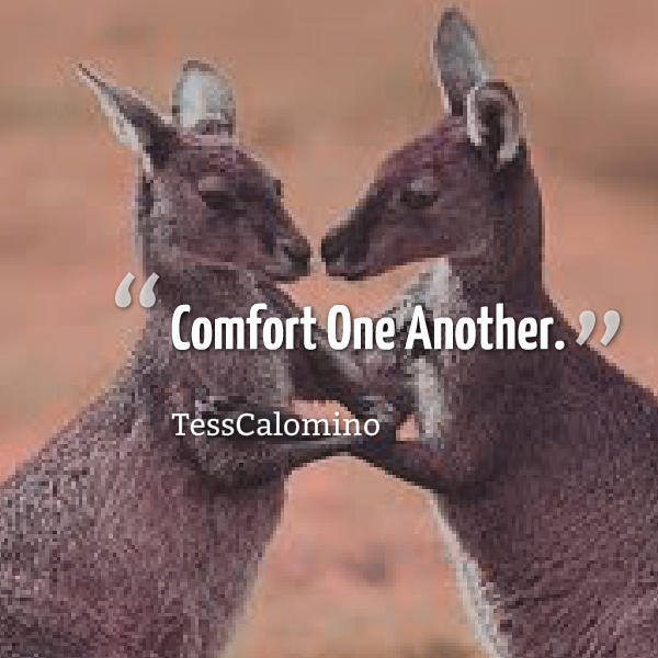 """Comfort One Another."".. - Tess Calomino"