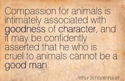 Compassion for Animals is  Character, and it may be Confidently Asserted that he Who is cruel to animals cannot be a good man. - Arthur Schopenhauer