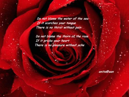 Do Not Blame The Water Of The Sea If It Searches Your Tongue. There Is No Thirst Without Pain… ~ Blame Quotes