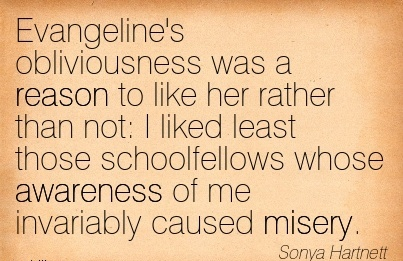 Evangeline's Obliviousness Was A Reason To like Her Rather Than Not  I Liked Least Those Schoolfellows Whose Awareness Of Me Invariably Caused misery. - Sonya Hartnett