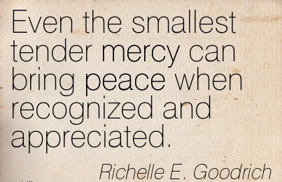 Even the Smallest Tender mercy can bring peace When Recognized and Appreciated. - Richelle E. Goodrich