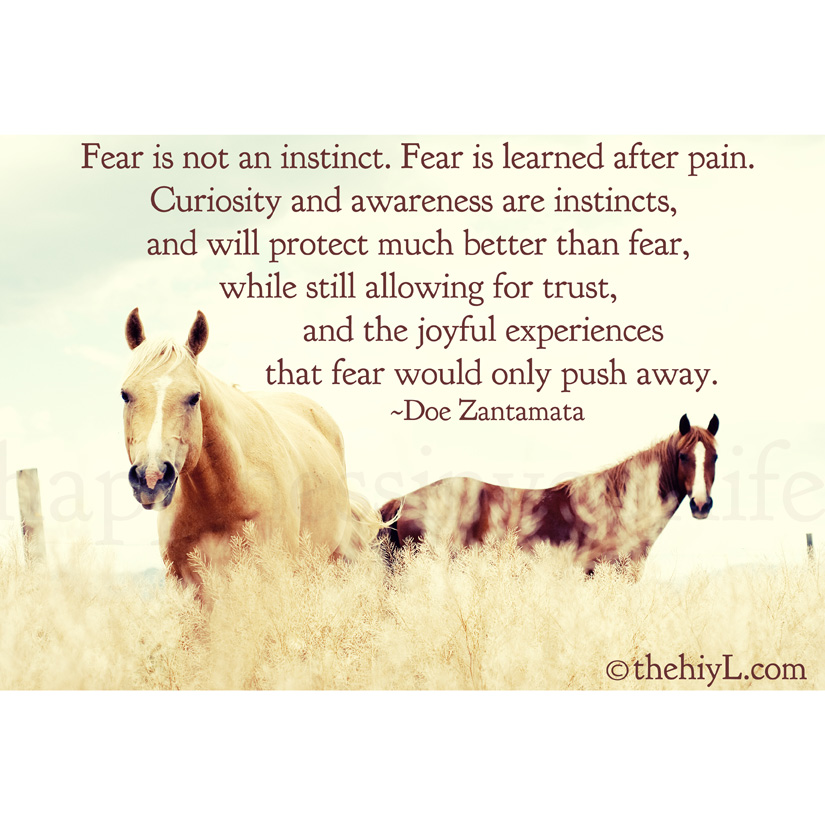 Fear Is Not An instinct. Fear Is LEarned After Pain Curisosity And Awareness Are Instints, And Will Protect much Better than Fear, While Still Allowing For Trust. - Doe Zantamata