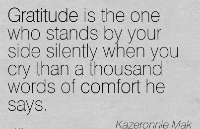 Gratitude is the one who stands by your side silently When you Cry than a Thousand Words of Comfort he Says. - Kazeronnie Mak