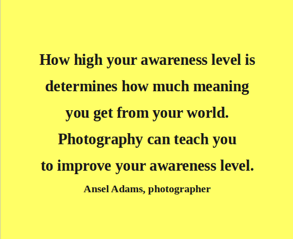 How High Your Awareness Level Is Determines How Much Meaning You get From Your World. Photography Can Teach You To Improve Your Awareness Level. - Absel Adams