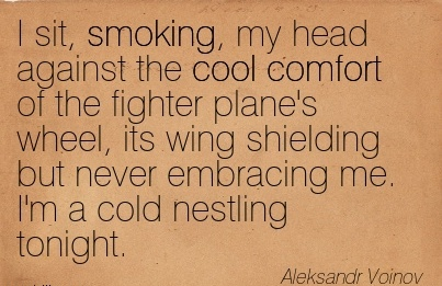 I Sit, Smoking, My Head Against the Cool Comfort of the Fighter plane's Wheel, its wing Never Embracing me. I'm a Cold Nestling Tonight. - Aleksandr Voinov