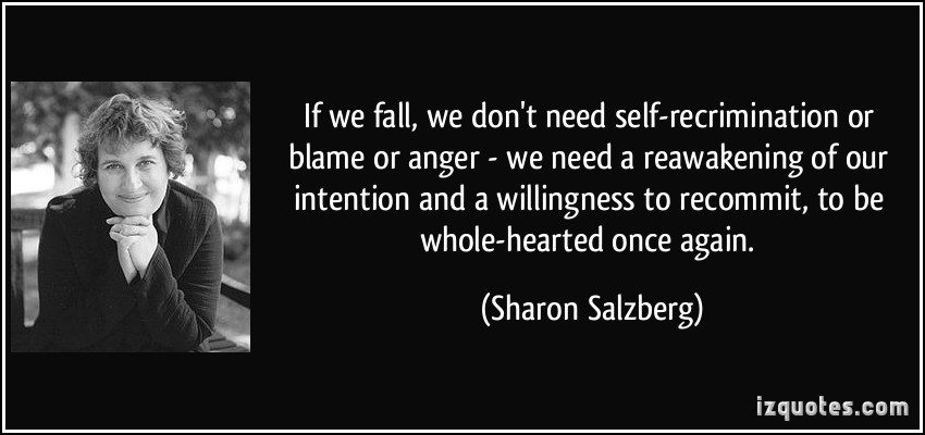 If We Fall We Don't Need Self Recrimination Or Blame Or Anger We Need A Reawakening Of Our Intention. - Sharon Salzberg