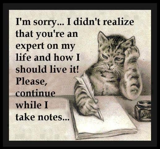 I'm Sorry… I didn't Realize that you're An Expert On My life On My Life And how I Should Live It. - Cheating Quotes