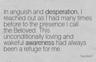 In Anguish And Desperation, I Reached Out As I Had Many Times Before to the Presence I call the Beloved. This Unconditionally loving…. Refuge For Me.
