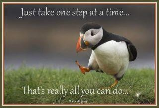 Just Take One Step at A Time That's Really All You Can Do. - Addiction Quote