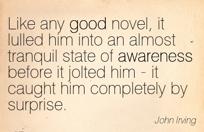 Like Any Good Novel, It Lulled Him Into An Almost Tranquil State Of Awareness Before It Jolted Him - it Caught Him Completely By Surprise. - John Lrving