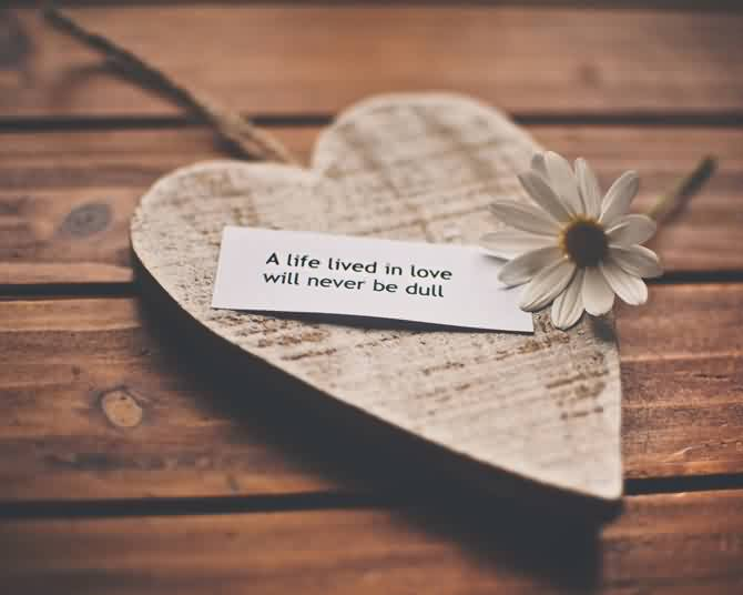 Love Quotes-Life will never be dull in Love