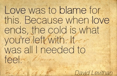 Love Was To Blame For This. Because When Love Ends, The Cold Is What You're Left With. It Was All I Needed To Feel. - David Levithan