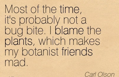 Most Of The Time, It's Probably Not A Bug Bite. I Blame The Plants, Which Makes My Botanist Friends Mad. - Carl Olson