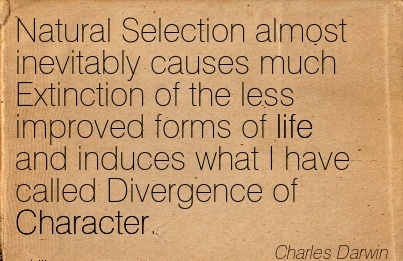 Natural Selection almost Inevitably Causes much Extinction of the less Improved Forms of life And Induces what I have Called Divergence of Character. - Charles Darwin