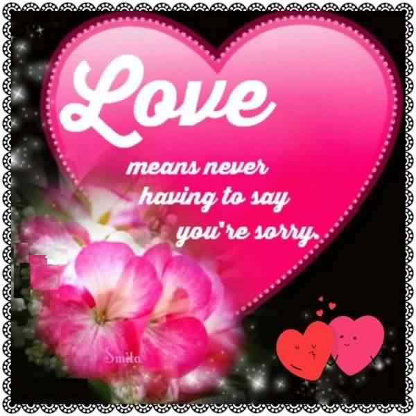 Nice Love Quote image-Never say sorry in Love