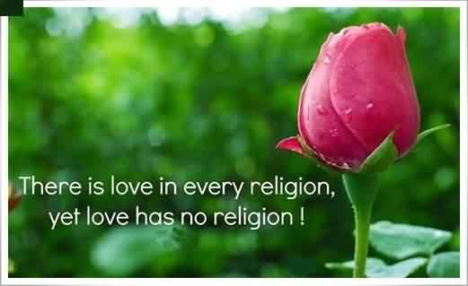 Nice Love Quote Imsge-Lobe has no religion