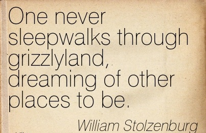 One Never Sleepwalks Through Grizzlyland, Dreaming Of Other Places To Be. - William Stolzenburg