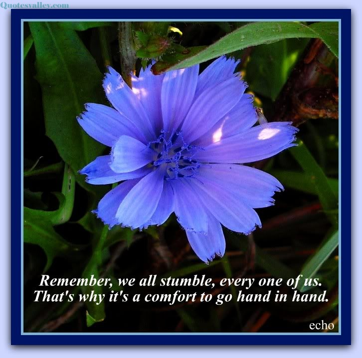 Remember, We All Stumble, Every One Of Us. That's Why It's A Comfort To go Hand In Hand.  - Comfort Quote