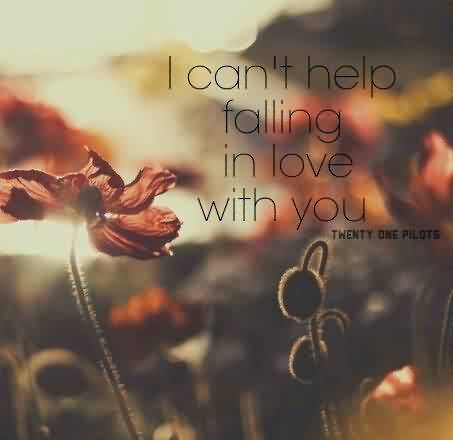 Short Love Proposal Quote-I am in Love with you