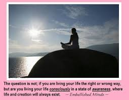 The Question Is Not; If You Are Living Your Life The Right Or Wrong Way But… Life Consciously In A Sate of Awareness.