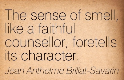 The Sense of Smell, like a Faithful Counsellor, foretells its Character. - Jean Anthelme Berillat