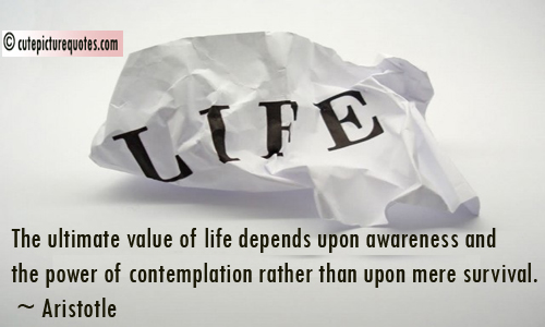 The Ultimate Value Of Life Depends Upon Awareness And Tghe Power Of Contemplation Rather Than Upon Mere Survival. - Aristotle