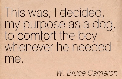 This was, I Decided, my Purpose as a Dog, to Comfort the boy Whenever he Needed Me. - W. Bruce Cameron