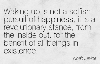 Waking Up Is Not A Selfish Pursuit Of Happiness, It Is A Revolutionary Stance, From The Inside Out, For The Benefit Of All Beings In Existence. - Noah Levire