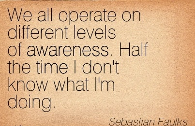 We All Operate On Different Levels of Awareness. Half The Time I don't Know What I'm Doing. - Sebastian Faulks