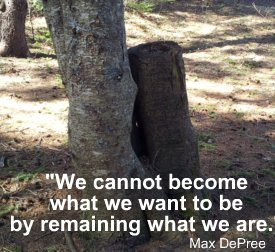 We Cannot Become what we want to be by Remining what We Are. - Max Depree