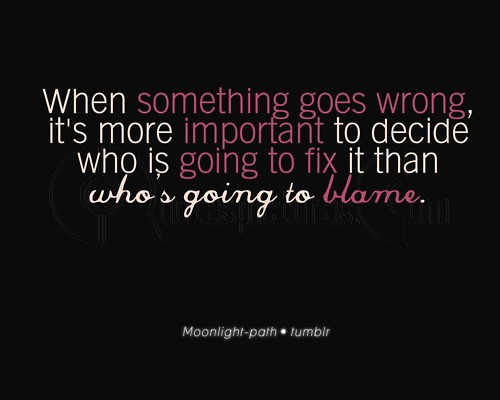 When Something Goes Wrong Its More Important To Decide Who Is Going To Fix It Than Who's Going To Blame.
