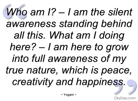 Who Am I Am-The Silent Awareness Standing behind All This. What Am I Doing Here ! - Awareness Quote