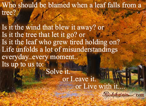 Who Should Be Blames When A Leaf Falls From A Tree.