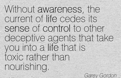 Without Awareness, The Current Of Life Cedes Its Sense Of …That Take You Into A Life That Is Toxic Rather Than Nourishing. - Garey Gordon