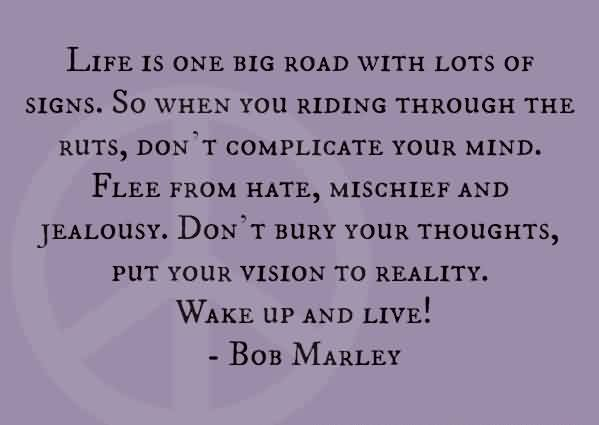 Amazing Life Quotes by bob Marley - Wake up and Live