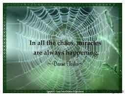 Awesome Chaos Quote~In All The Chaos Miracles Are Always Happening.