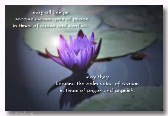 Beautiful Chaos Quote  ~ may all beings become messengers of peace in time of chaas and conflict.