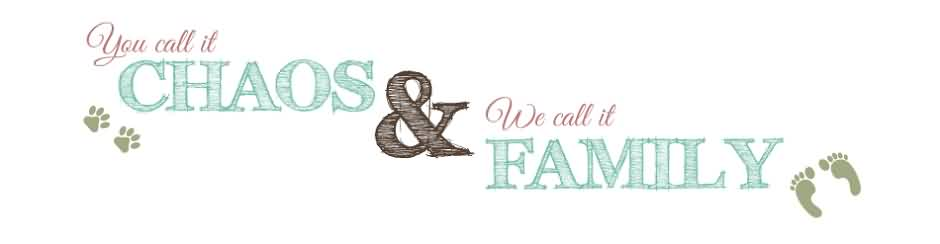 Beautiful Chaos Quote  ~You Call It Chaos & We Call It Family.