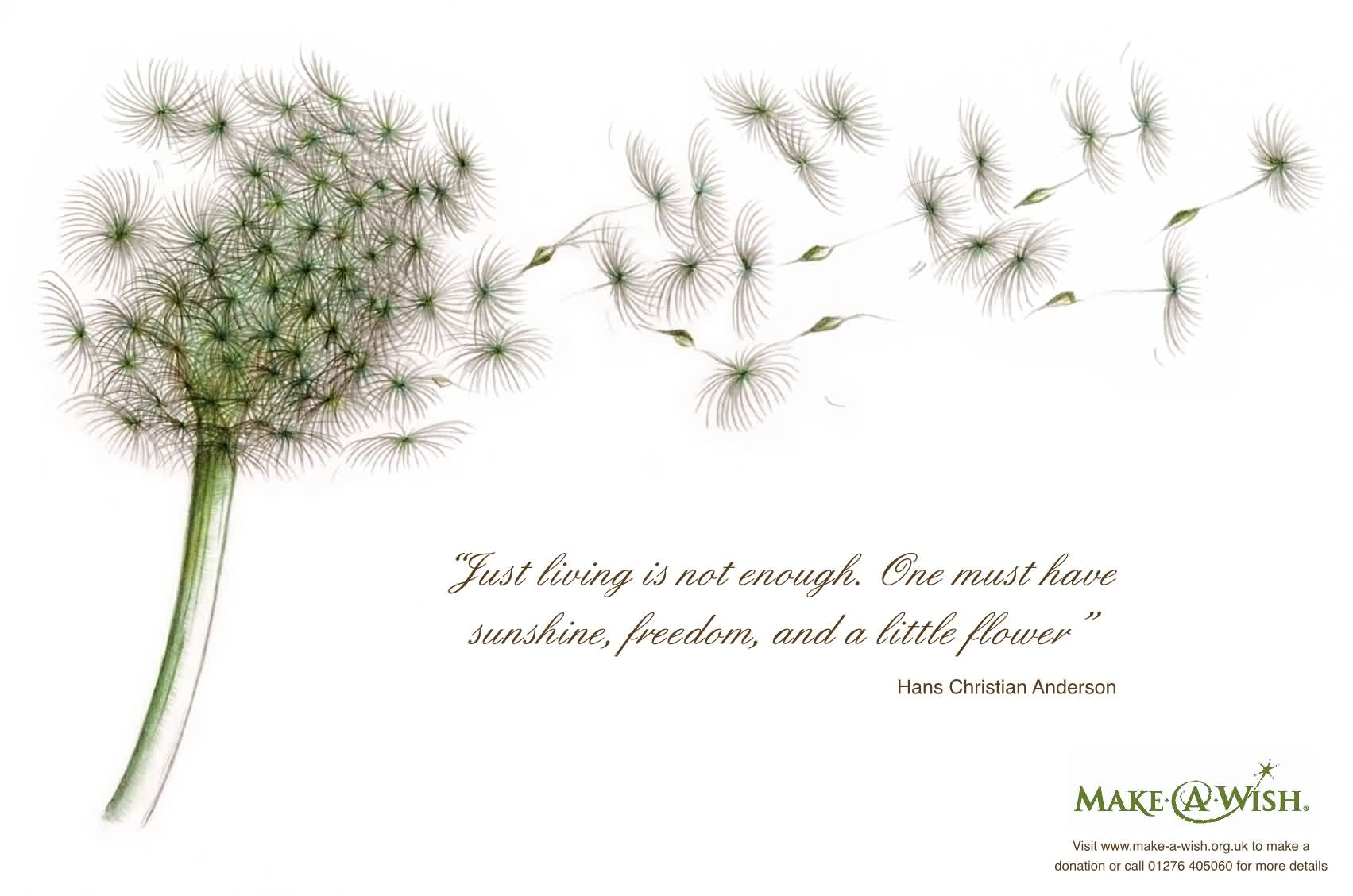 Beautiful Charity Quote By Hans Christian Anderson~ Just Living is not enough.