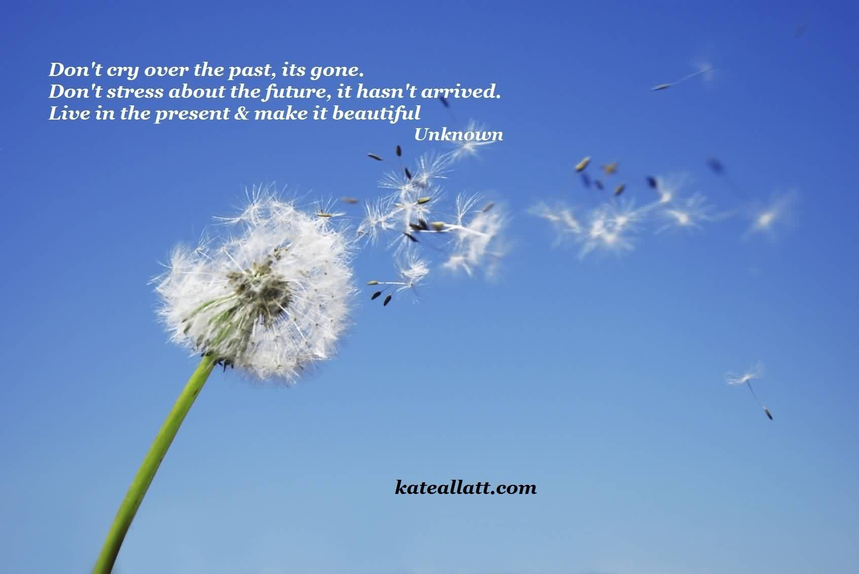 Beautiful Charity Quote By Unknown~ Don't cry over the past,its gone..