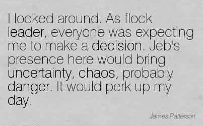 Best Chaos Quote By James Patterson~I looked around. As flock leader, everyone was expecting me to make a decision.