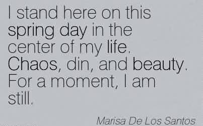 Best Chaos Quote  By Marisa De Los Santos ~ I stand here on this spring day in the center of my life. Chaos, din, and beauty. For a moment, I am still.