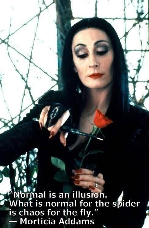 Best Chaos Quote By Morticia Addams~Normal is an illusion what is normal for the spider is Chaos for the fly.