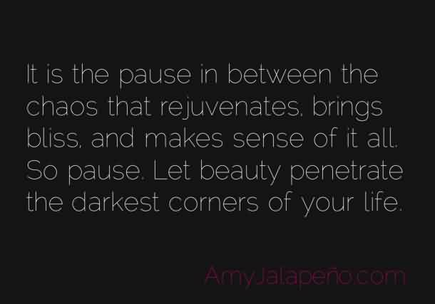 Best Chaos Quote ~It Is The Pause In Between The Chaos That Rejuvenates, Brings Bliss, And Makes Sense Of It All. So Pause. Let Beauty Penetrate The Darkest Corners Of Your Life.