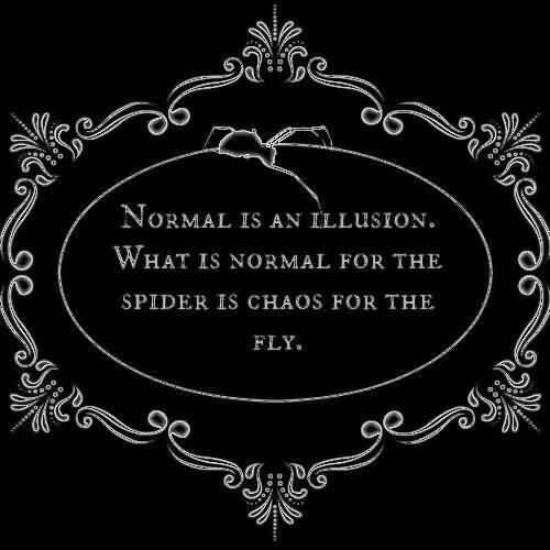 Best  Chaos Quote~Normal Is An Illusion. What Is Normal For The Spider Is Chaos For The Fly.