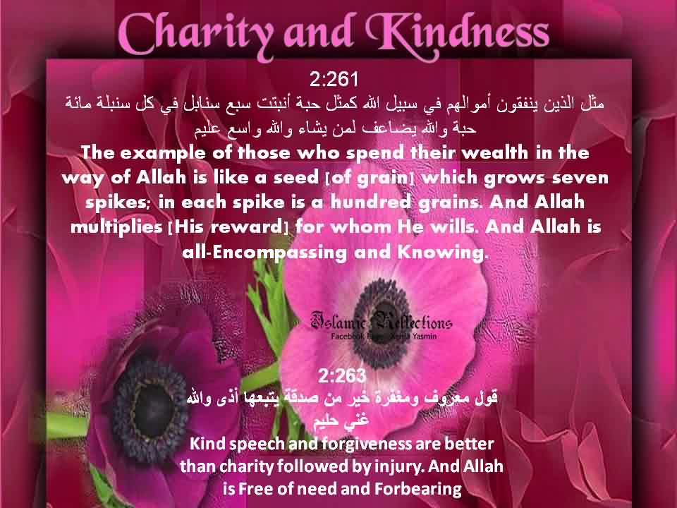 Best Charity Quote ~ The example of those who spend their wealth on the way of allah is like a seed which grows seven spikes..