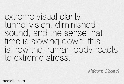 Best Clarity Quotes By Malcolm Gladwell~ extreme visual clarity, tunnel vision, diminished sound, and the sense that time is slowing down. this is how the human body reacts to extreme stress.