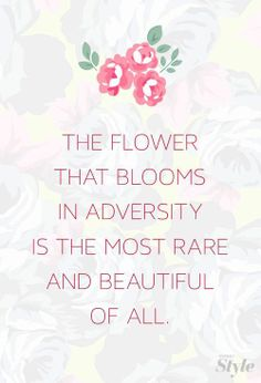Best Clarity Quotes~ The flower that blooms in adversity is the most rare and beautiful of all.