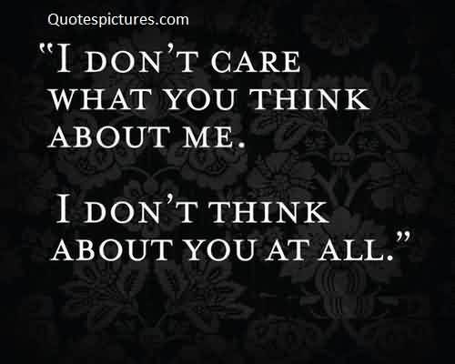 Best Famous Amazing Quotes on Life Image - I don't care what you think about me
